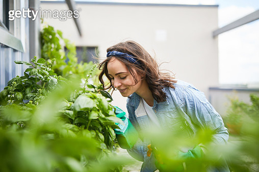 Young woman smelling plants outside greenhouse - gettyimageskorea