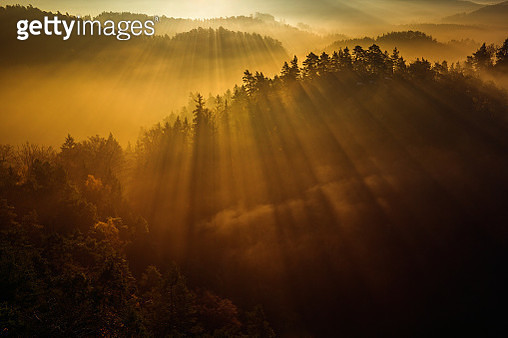 Wake Up - gettyimageskorea