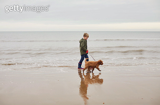 Young boy walking his pet dog by the sea - gettyimageskorea