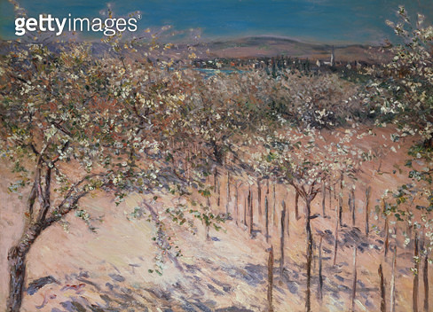 <b>Title</b> : Orchard with Flowering Apple Trees, Colombes<br><b>Medium</b> : oil on canvas<br><b>Location</b> : Galerie Daniel Malingue, Paris, France<br> - gettyimageskorea