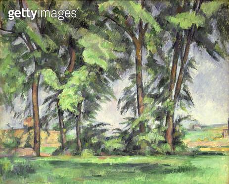 <b>Title</b> : Tall Trees at the Jas de Bouffan, c.1883 (oil on canvas)<br><b>Medium</b> : oil on canvas<br><b>Location</b> : Samuel Courtauld Trust, Courtauld Institute of Art Gallery<br> - gettyimageskorea