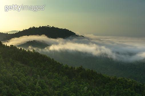 Foggy day - gettyimageskorea