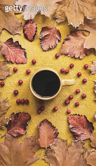 pattern of yellow and brown leaves with red berries on a yellow background - gettyimageskorea