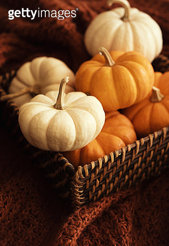 Close up of mini pumpkins in a basket - gettyimageskorea