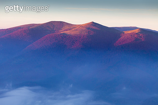 Peaks in sun light and fog above valley. Carpathian Mountains, Ukraine - gettyimageskorea