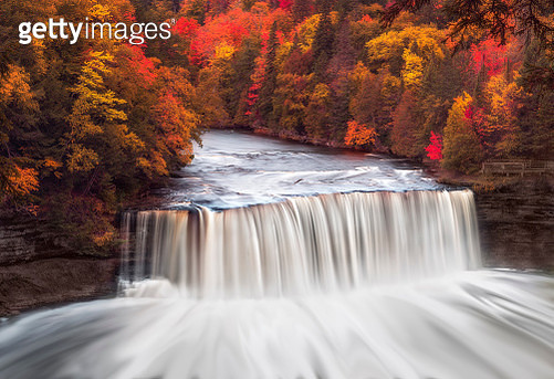 Upper Tahquamenon Falls in Fall Color. Tahquamenon Falls State Park encompasses close to 50,000 acres stretching over 13 miles. Most of this is undeveloped woodland without roads, buildings or power lines. The centerpiece of the park, and the very reason  - gettyimageskorea