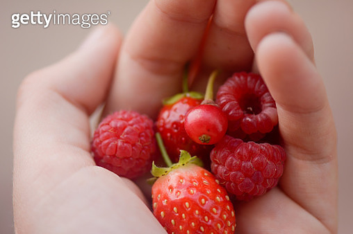 Handful of home grown berries - gettyimageskorea