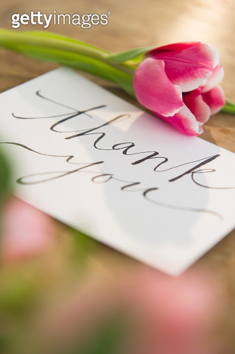 Close-up of greeting card and flower - gettyimageskorea