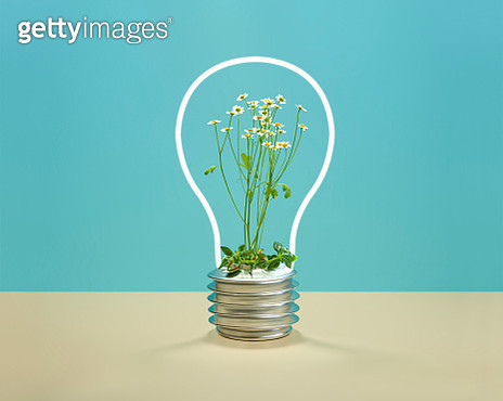 Daisies inside a neon light with the shape of a light bulb - gettyimageskorea