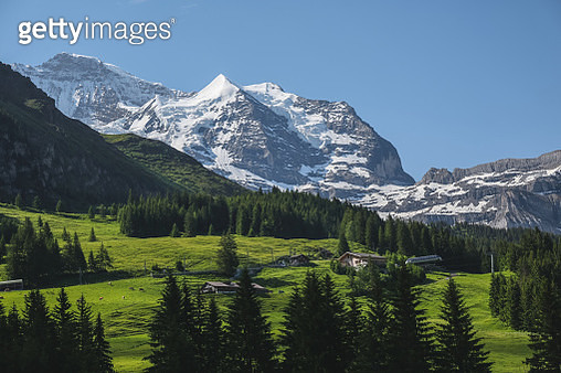 Famous Jungfrau mountain with forest and valley, Bernese Alps, Switzerland - gettyimageskorea