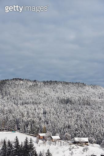 Snowy Winter - gettyimageskorea