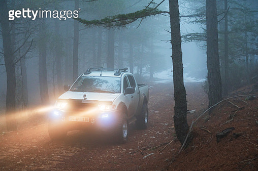 Pick-up truck on forest road - gettyimageskorea
