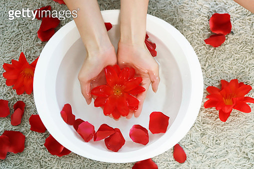 Hands dipping into beauty treatment bowl with rose petals - gettyimageskorea
