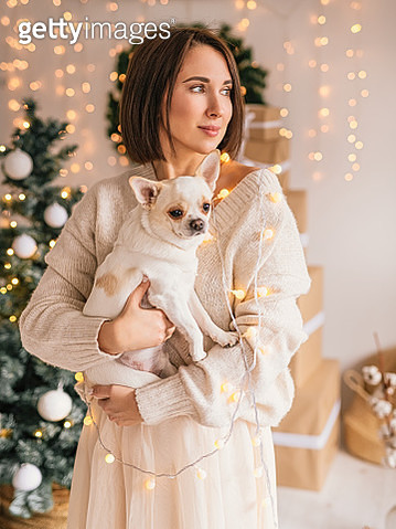 Young adult happy caucasian woman in a sweater holding a chilhuahua cute dog on Christmas on Christmas - gettyimageskorea
