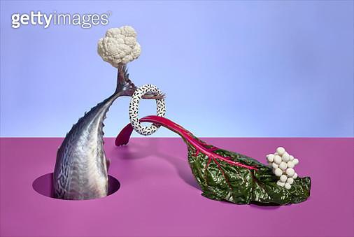 Balanced Diet Fish - gettyimageskorea