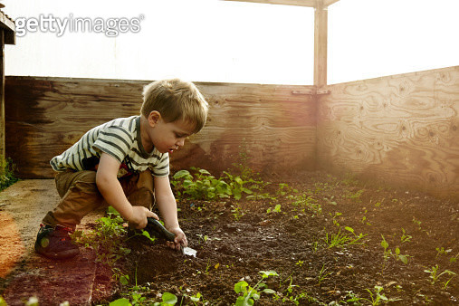 Young boy planing seeds in a greenhouse. - gettyimageskorea