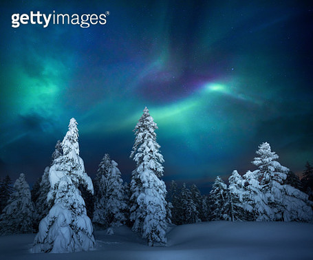 Winter Night - gettyimageskorea