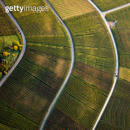 View from above textured green farmland crops - gettyimageskorea