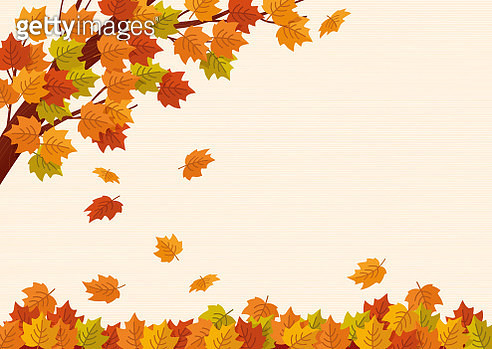 Falling autumn leaves. Vector illustration. - gettyimageskorea