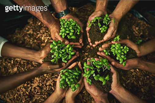 Give green a chance - it might just grow on you - gettyimageskorea