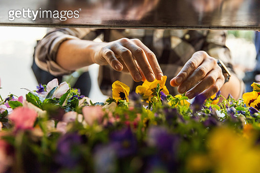 Midsection of male owner arranging flowers at market stall - gettyimageskorea