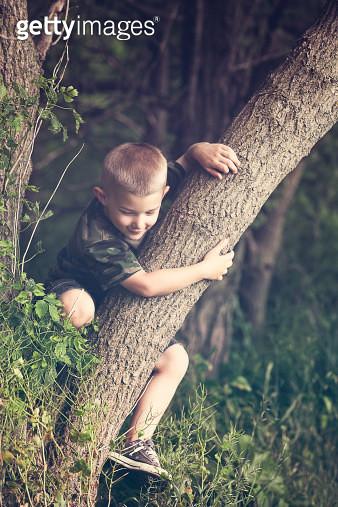 Boy climbing on tree - gettyimageskorea