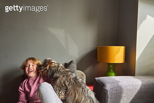 Child laughing while his pet dog licks his cheek - gettyimageskorea