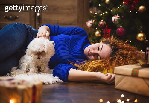 Young beautiful woman enjoying at home with her Maltese dog in a cozy Christmas atmosphere - gettyimageskorea