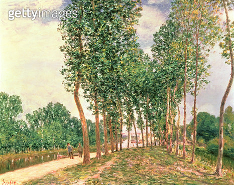 <b>Title</b> : Banks of the Loing, near Moret (oil on canvas)Additional InfoBords du Loing, pres du Moret;<br><b>Medium</b> : oil on canvas<br><b>Location</b> : Private Collection<br> - gettyimageskorea
