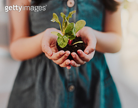 Cropped shot of an unrecognizable young girl holding a plant growing out of soil while standing indoors - gettyimageskorea