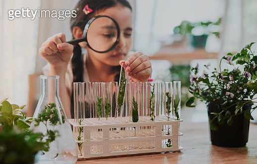 Cropped shot of an adorable little girl looking through a magnifying glass while analysing plants from a test tube at home - gettyimageskorea