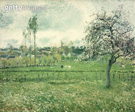 <b>Title</b> : Meadow at Eragny, 1885<br><b>Medium</b> : oil on canvas<br><b>Location</b> : Galerie Daniel Malingue, Paris, France<br> - gettyimageskorea