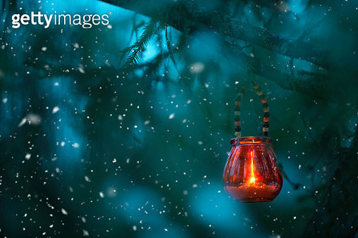 Candle lantern hanging from tree branch - gettyimageskorea