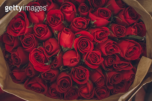 Close-Up of Roses Bouquet - gettyimageskorea