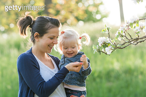 Mother showing her little daughter blossoms of a tree - gettyimageskorea