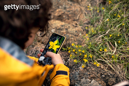 Little boy taking pictures of flowers - gettyimageskorea