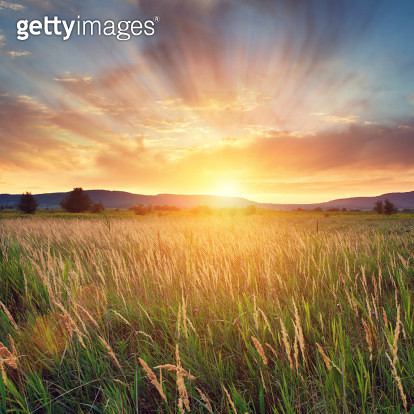 Summer sunset with hills and wonderful clouds.  - gettyimageskorea