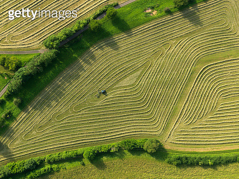 Aerial view tractor in patterned green agricultural crop, Hohenheim, Baden-Wuerttemberg, Germany - gettyimageskorea