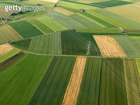 Aerial view vibrant green agricultural crops, Donaueschingen, Baden-Wuerttemberg, Germany - gettyimageskorea