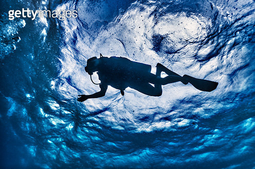 Scuba Diver Silhouette underwater low angle view - gettyimageskorea