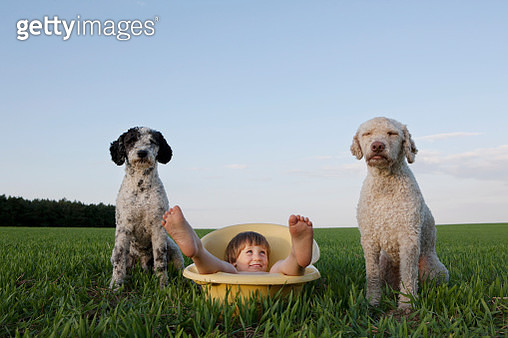 Portrait playful girl in bathtub next to dogs in rural field - gettyimageskorea