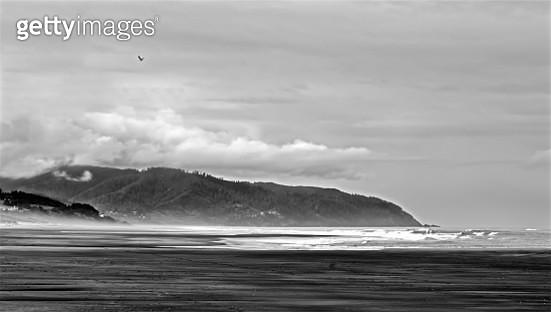 Pacific City Beach - gettyimageskorea