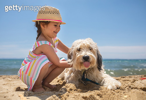 Cute girl and her dog on the beach - gettyimageskorea