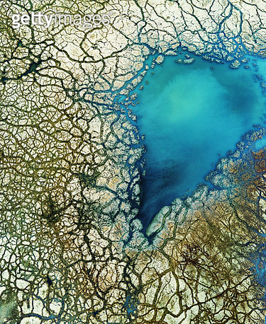 Aerial view of high mineral content wetland with dead moss. - gettyimageskorea