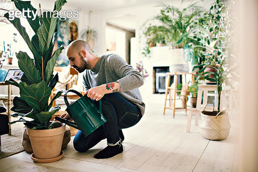 Full length of man kneeling while watering potted plant at home - gettyimageskorea