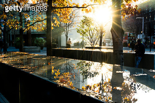 Autumn sun reflecting off water and fallen leaves in London UK - gettyimageskorea