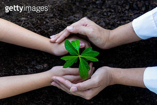 Cropped Image Of Mother And Kid Planting Seedling - gettyimageskorea
