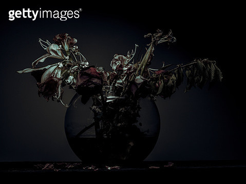 Vase with wilted flowers - gettyimageskorea