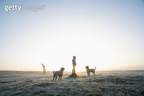Girl in frozen winter field with dogs - gettyimageskorea