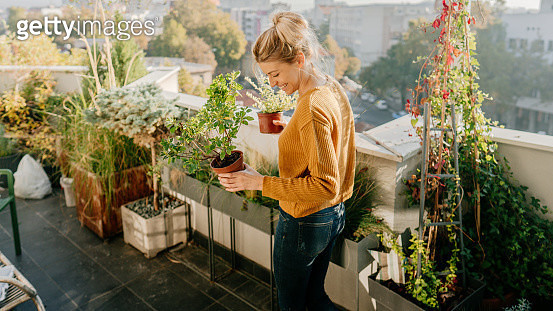 Taking care of my plants - gettyimageskorea